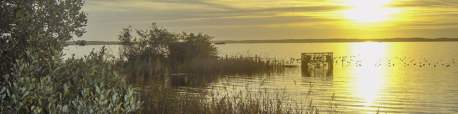 camping lac de biscarosse
