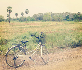 Balades à vélo Biscarrosse